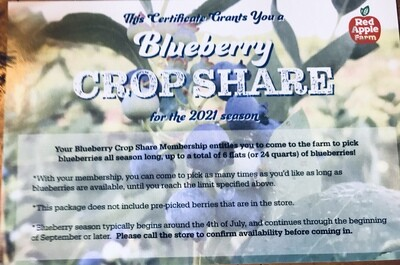 BLUEBERRY CROP SHARE Gift Certificate