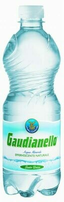 Gaudianello sparkling water 500ml