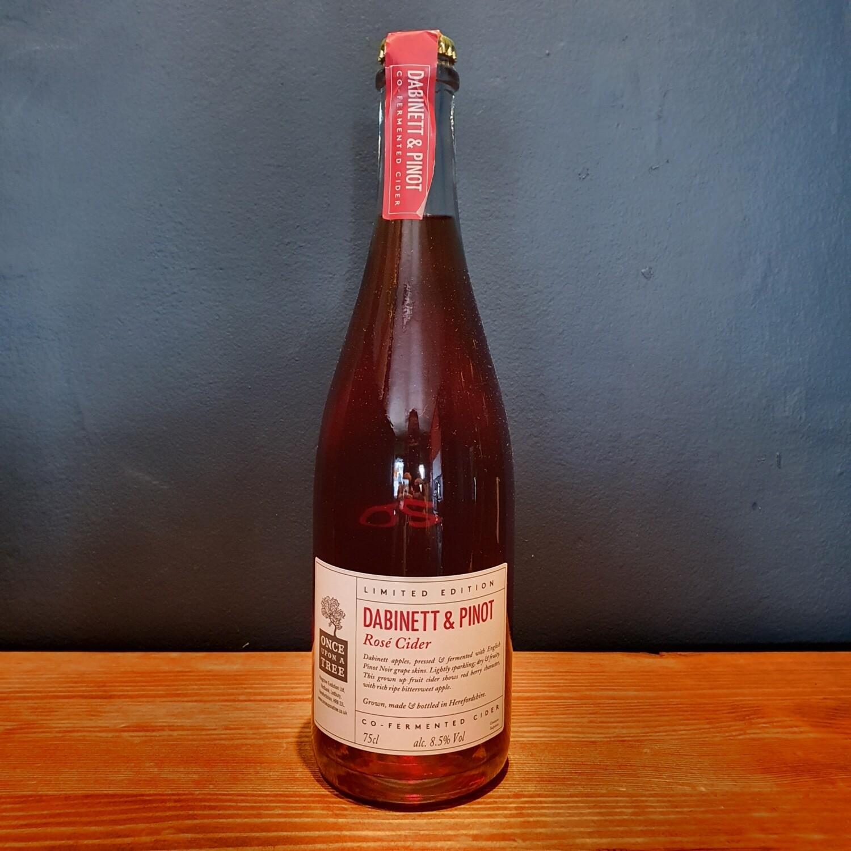 Dabinett & Pinot Rose Cider 18