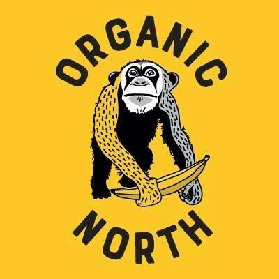 Organic Veg Box 13th August (Medium)
