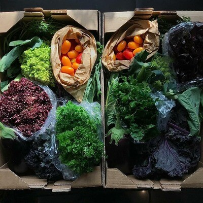 Organic Veg Box 8th April (Medium)