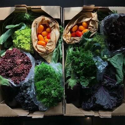 Organic Medium Veg AND Fruit Box 22nd October