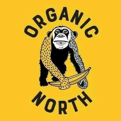 Organic Veg AND Fruit Box 29th April (Medium)