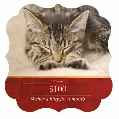 Donation - $100