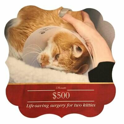 Donation - $500
