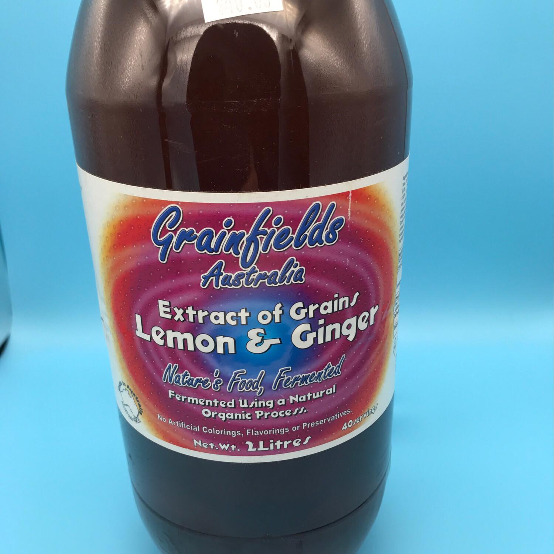 Lemon And Ginger 2 Liter 1 Case Of 6 Bottles