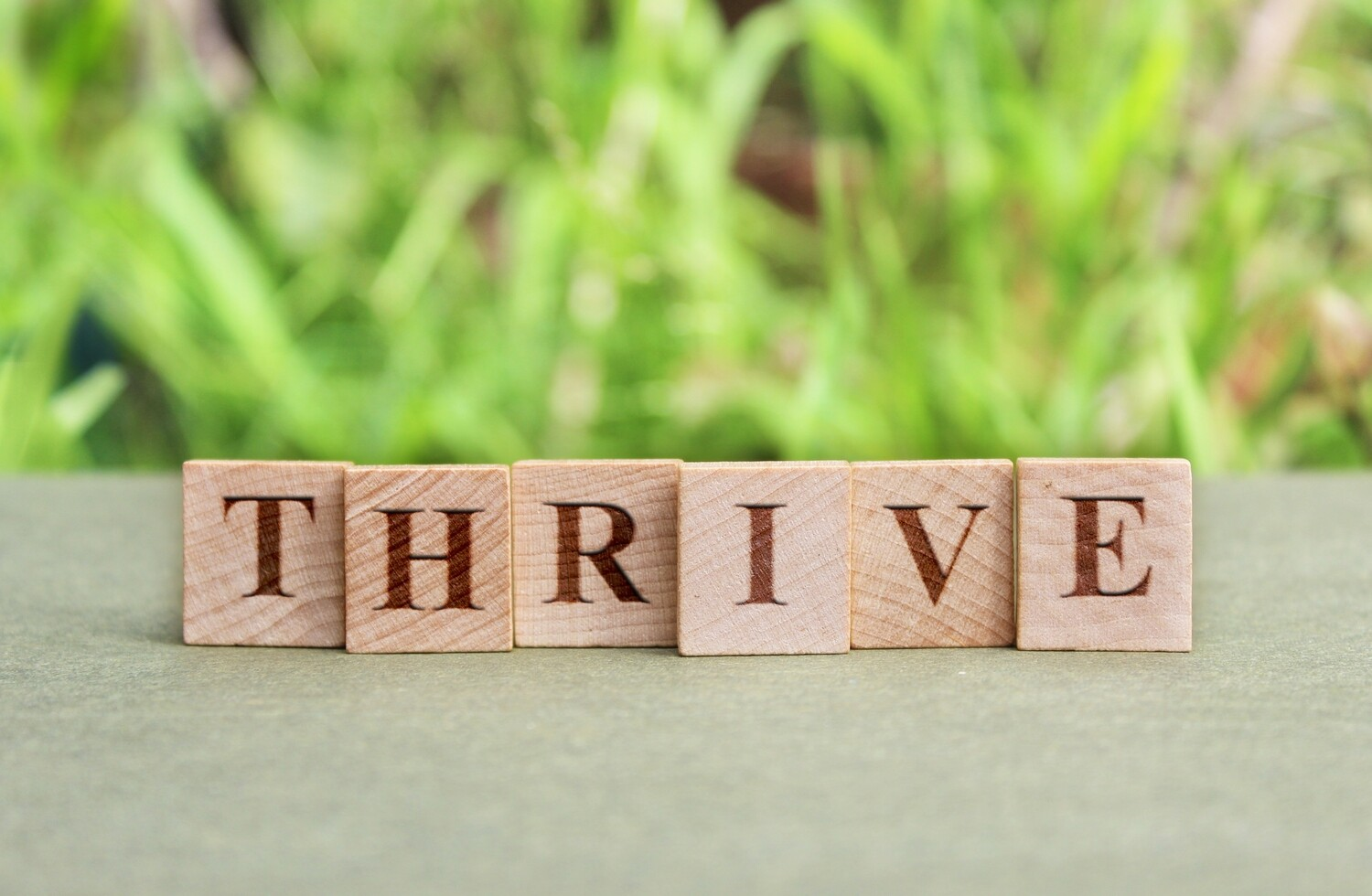 From Surviving to Thriving 1-1 coaching