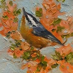 Things Are Looking Up, Nuthatch 6x6