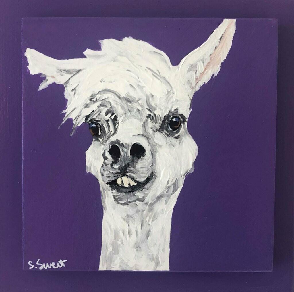 Llama on Purple