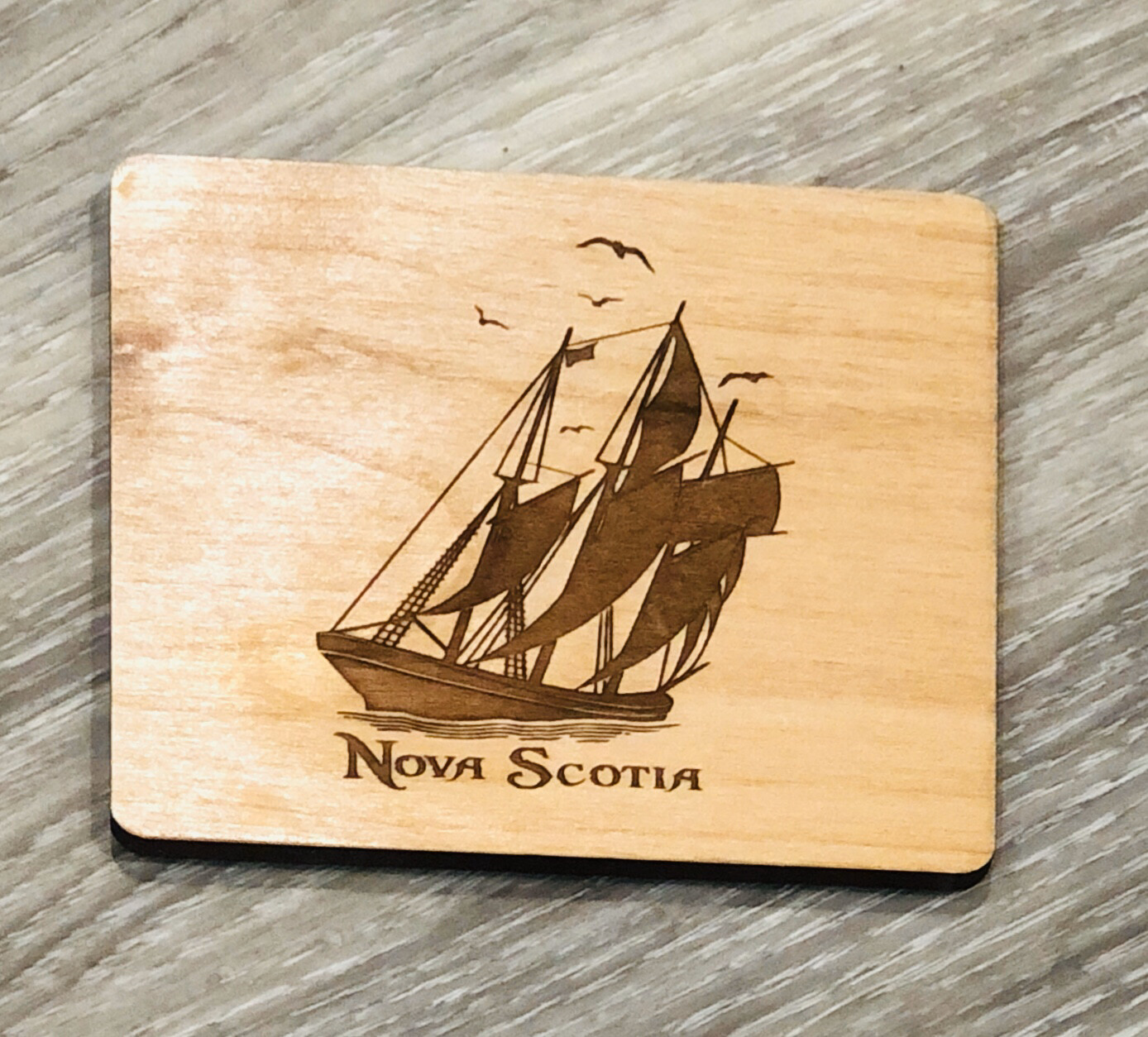Salt Air Schooner Coaster