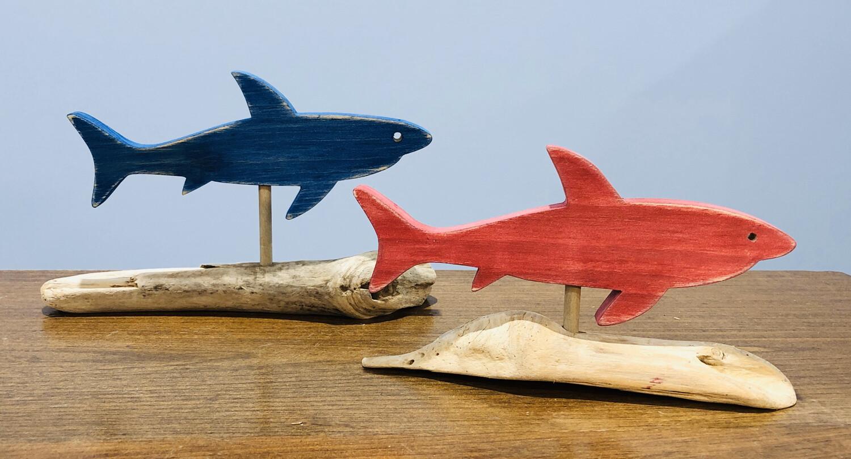 Jerry Walsh Small Shark