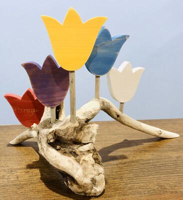 5 Tulips DW