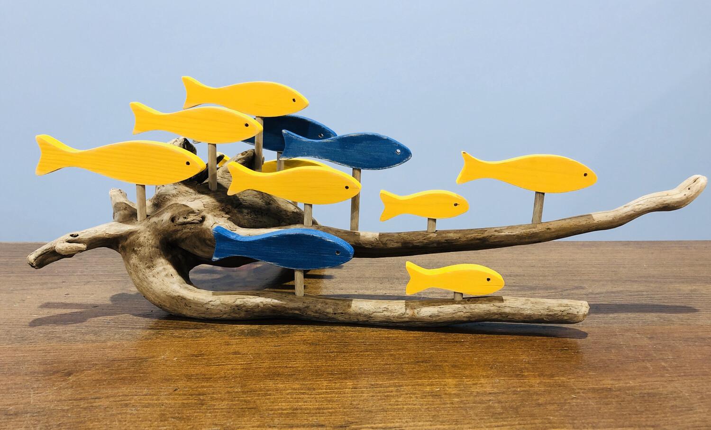 11 School Lge Fish Cons