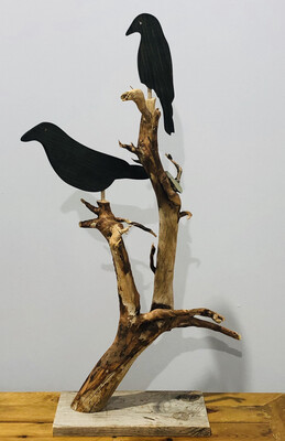 01 Crow Tree 2 Crows