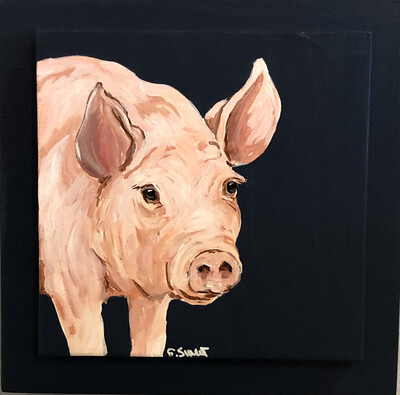 Pig on Midnight Blue