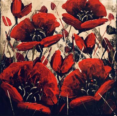 Wonderful Winter Poppies
