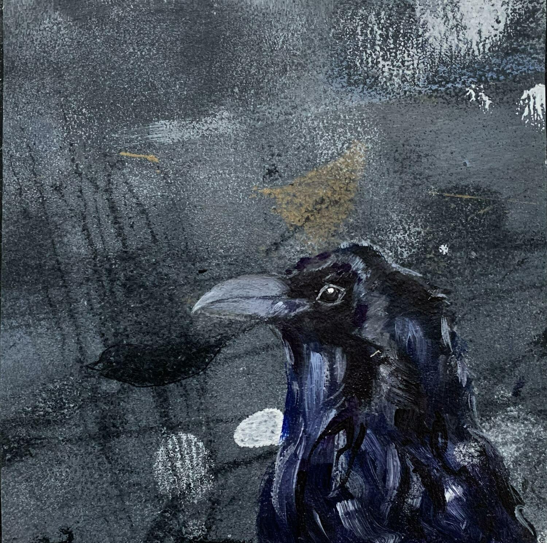 Raven, APS