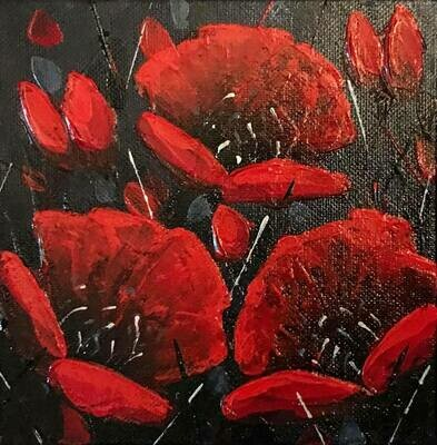 After Midnight Poppies 6x6
