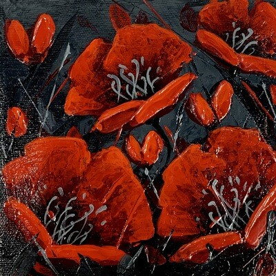 Night Poppies 6x6