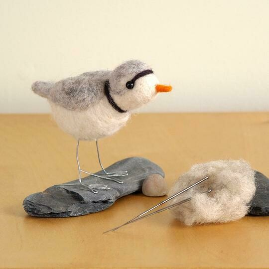 Piping Plover Felting Kit