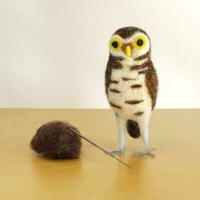 Burrowing Owl Felting Kit