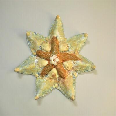 Starfish & Shells MJL