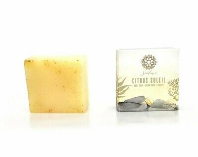 Citrus Soleil Soap - SeaLuxe