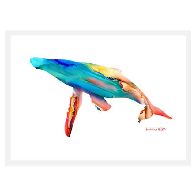 Whale Card - Hannah Hicks