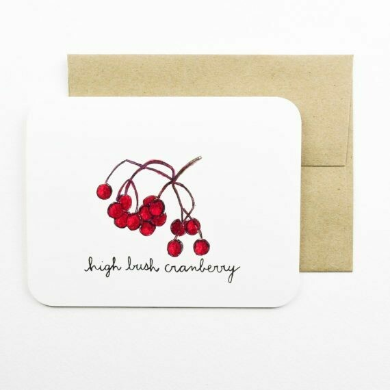 High Bush Cranberry - Field Day Paper