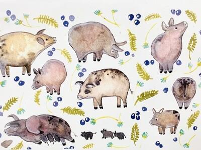 Pigs Card - Sarah Duggan