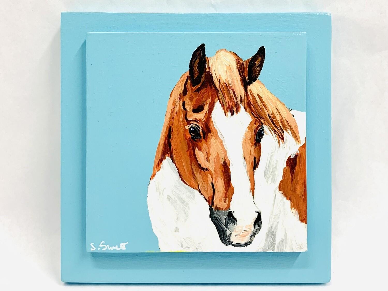 Pony on Shoreline Blue