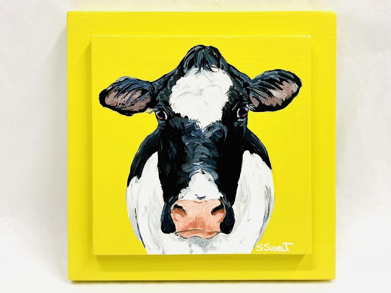 Holstein Cow on Squash Yellow
