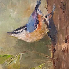 Singing on the Up-Swing, Nuthatch
