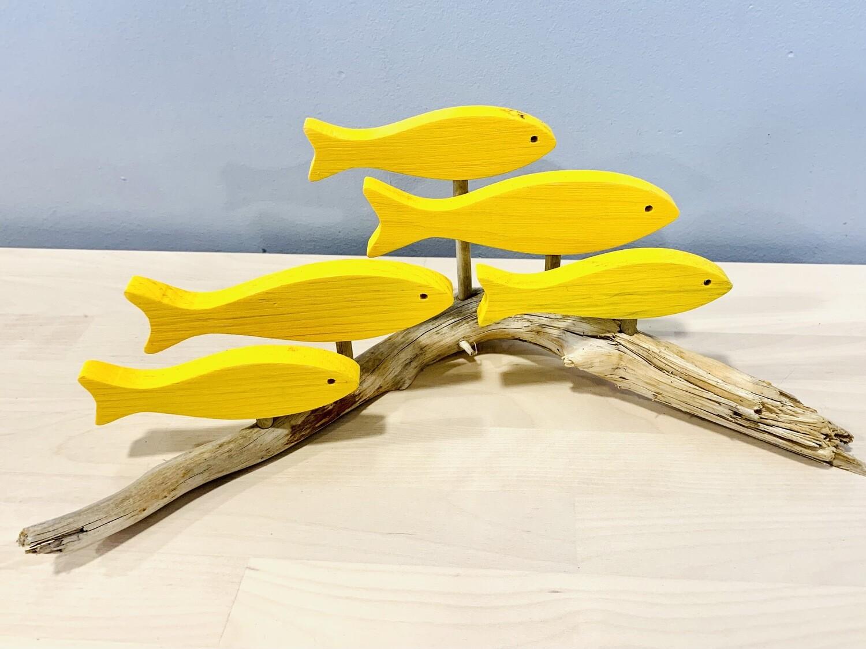 Yellow 5 Fish School - Jerry Walsh