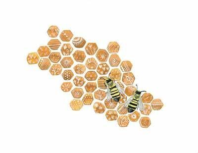 Honeycomb - Sarah Duggan