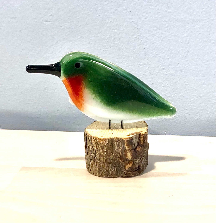 Glass Hummingbird on Perch