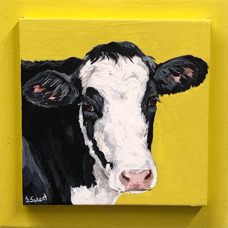 Holstein Calf on Spring Yellow