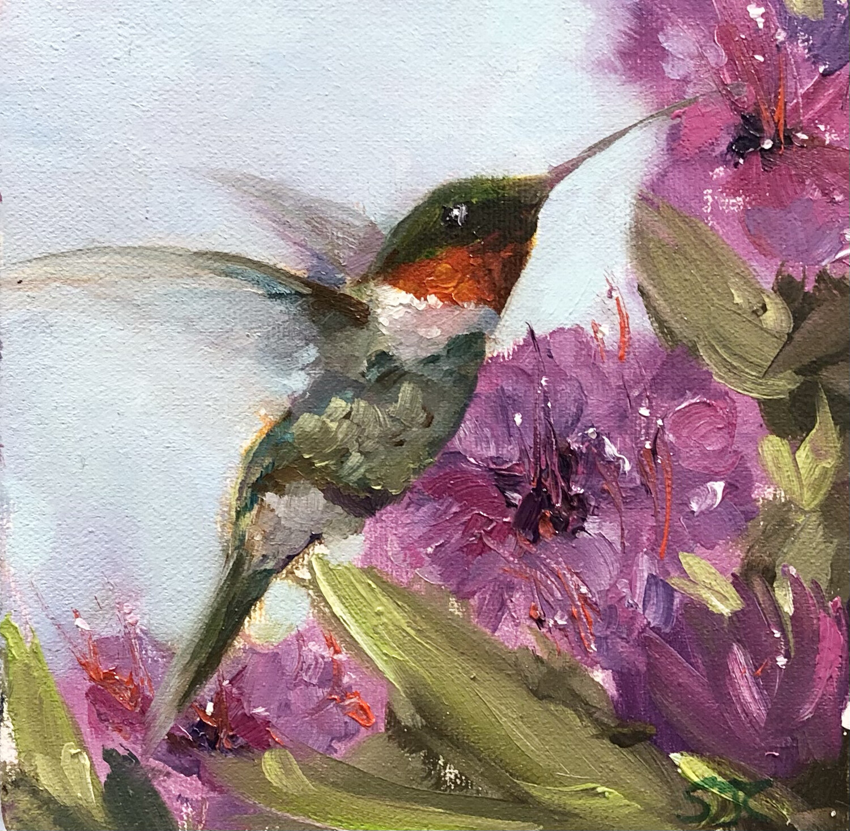 Sweety, Hummingbird