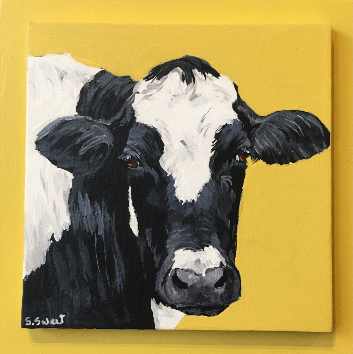 Holstein Cow on Spring Yellow