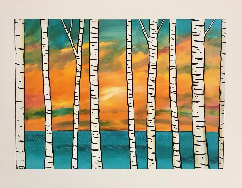 Birch Trees - Shelagh Duffett