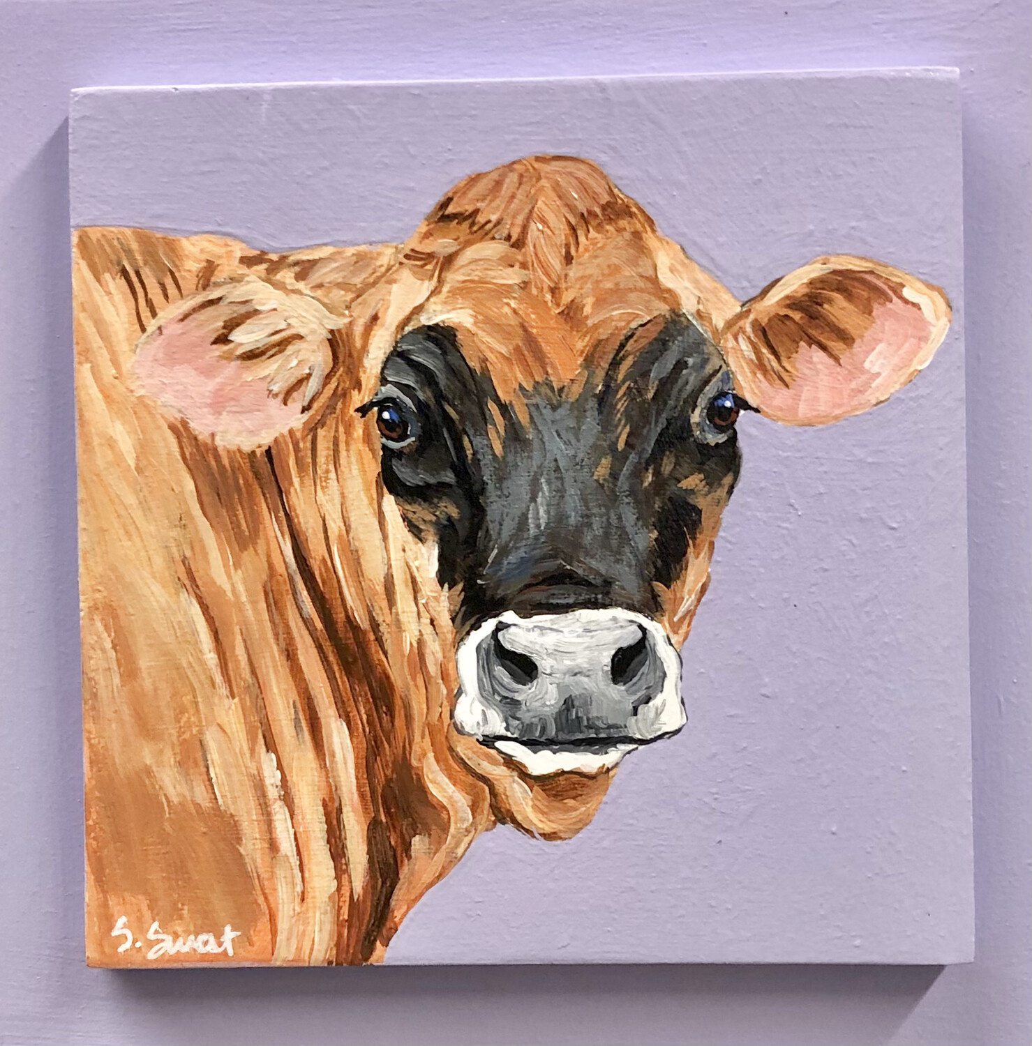 Jersey Cow on Spring Mauve