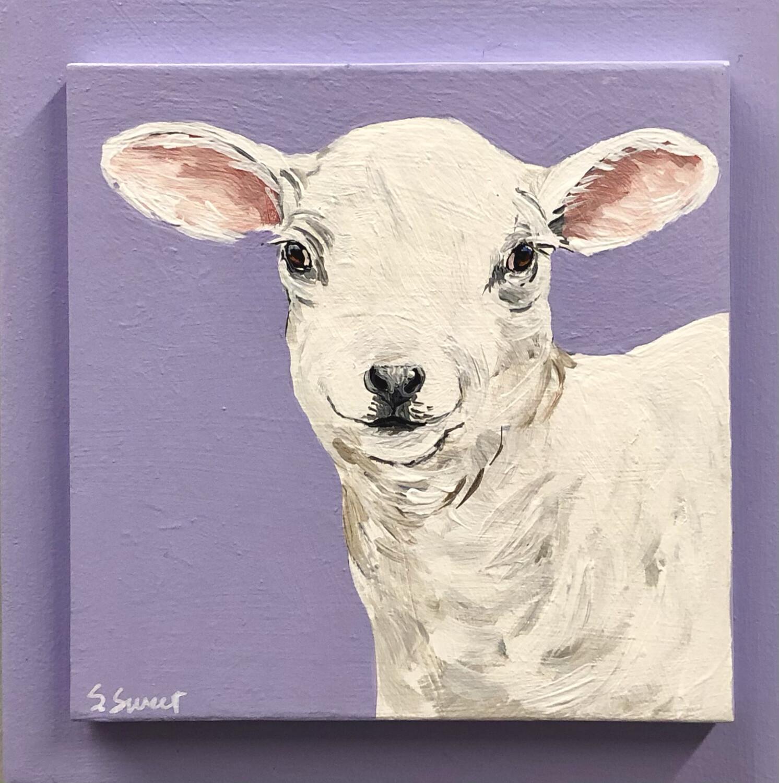 Lamb on Spring Mauve