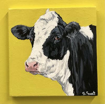 Holstein Heifer on Spring Yellow