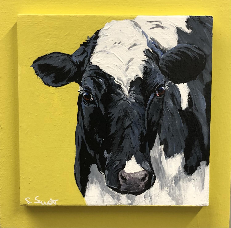 Holstein Heifer 2 on Spring Yellow