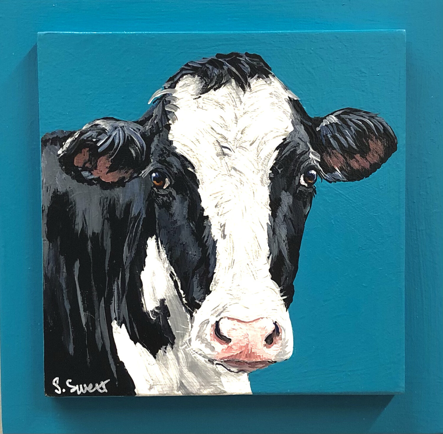 Holstein Cow 4 on Spring Teal