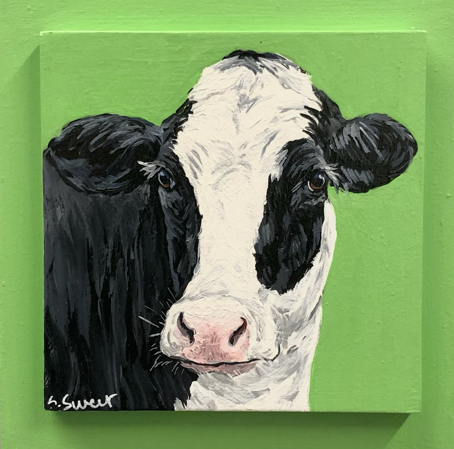 Holstein Cow 3 on Spring Green