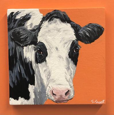 Holstein Cow 5 on Spring Orange