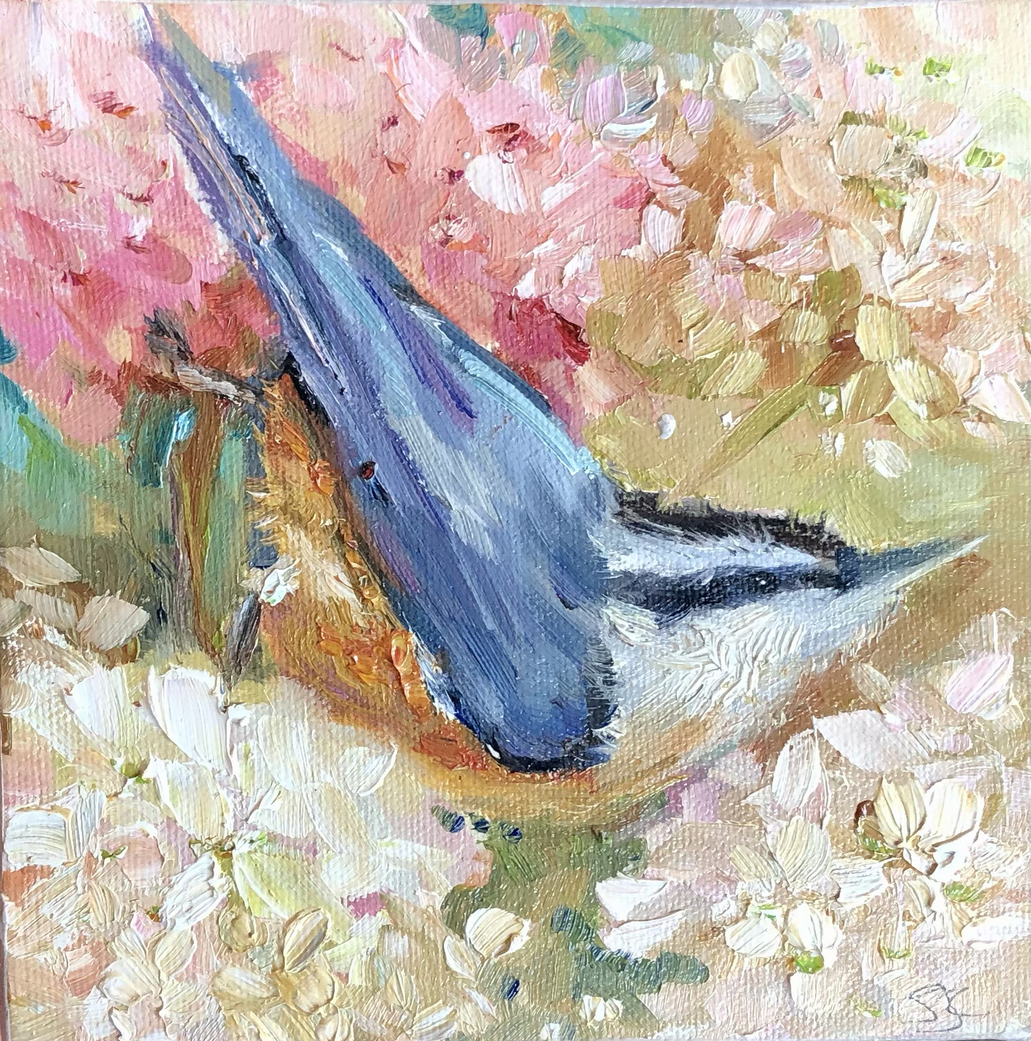 Happy Thoughts, Nuthatch