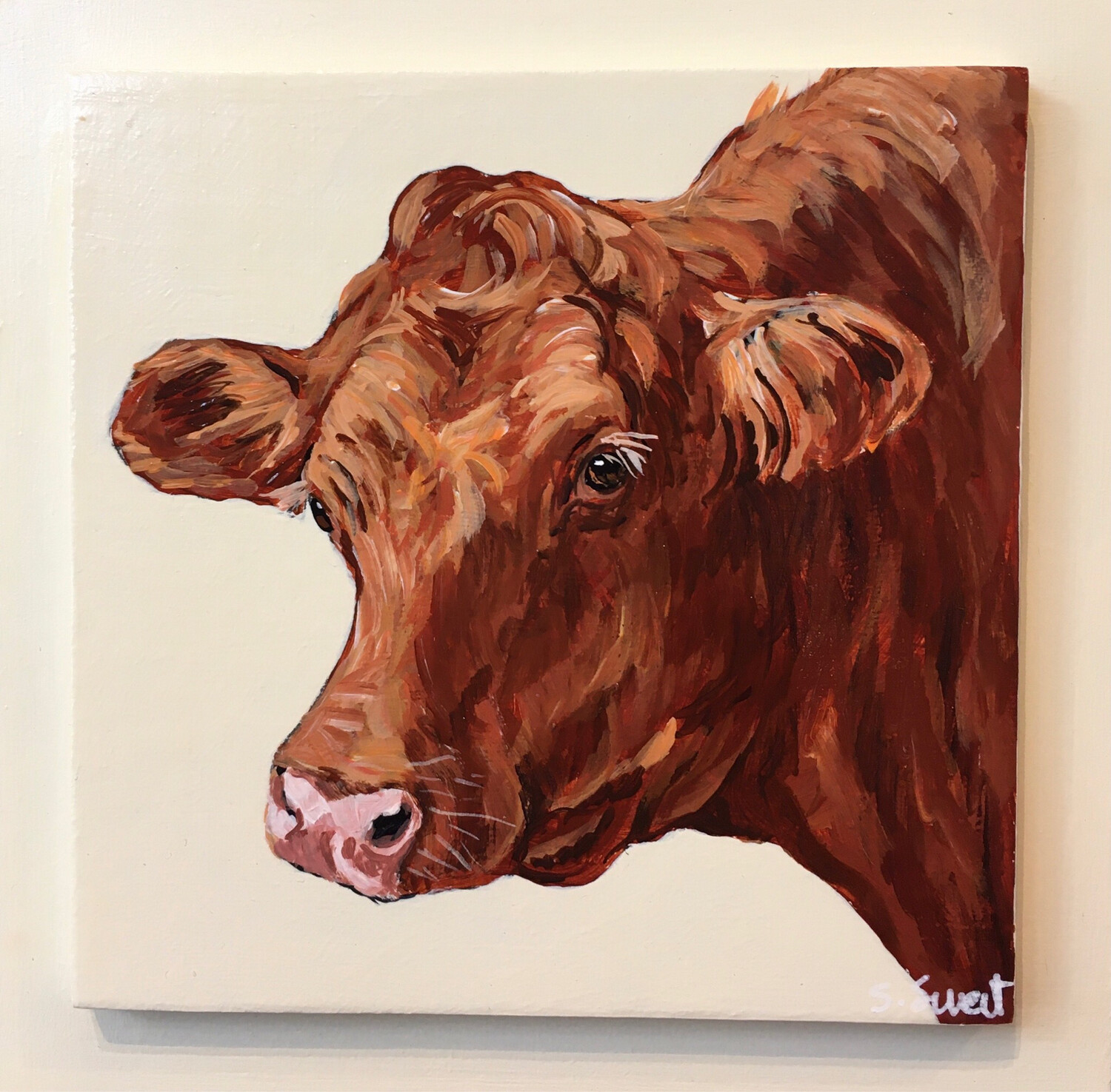 Red Cow on Buttermilk