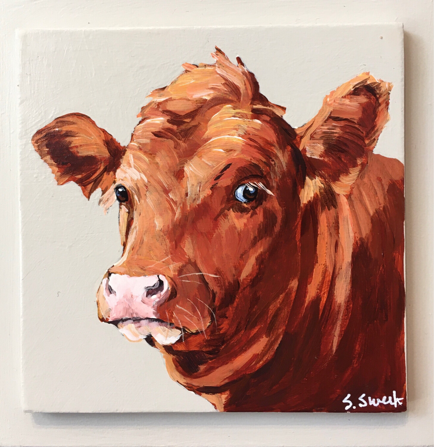 Red Cow on Sandy Grey